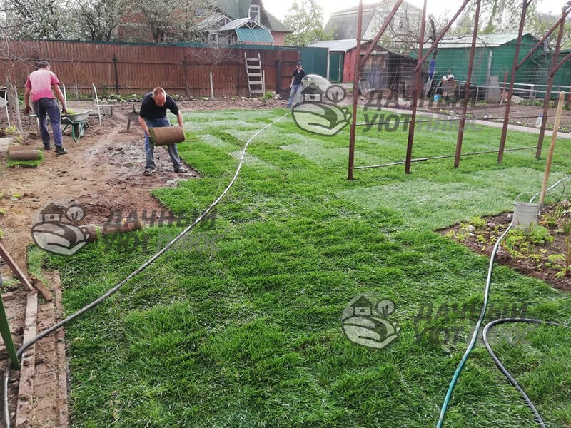 Рулонный газон укладка в Наро-фоминске